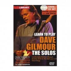 ویدیو آموزشی Dave Gilmour solos