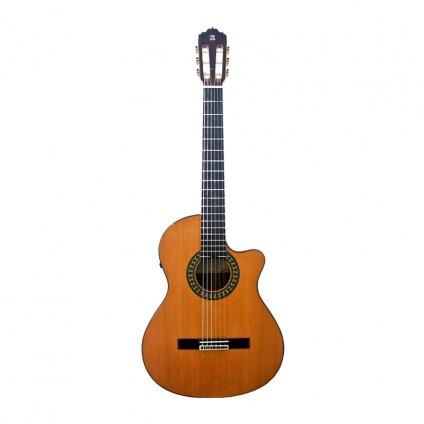 قیمت خرید فروش گیتار کلاسیک  Alhambra 5p CW E8