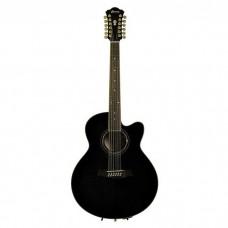 گیتار آکوستیک Ibanez AEL2012E TKS