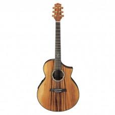 گیتار آکوستیک Ibanez EW50