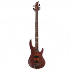 گیتار باس LTD D4 Natural Satin