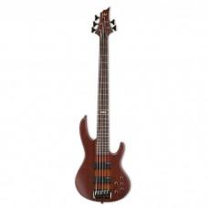 گیتار باس LTD D5 Natural Satin
