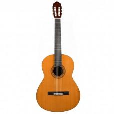 گیتار کلاسیک Yamaha C40 N