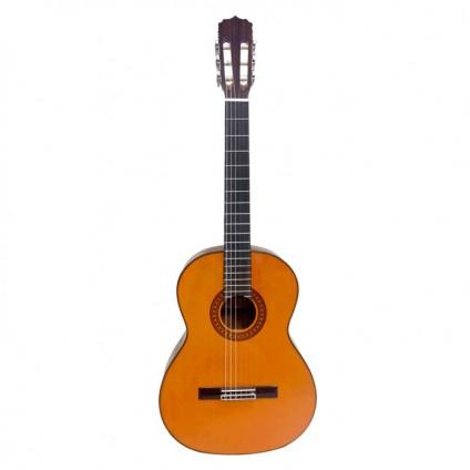 قیمت خرید فروش گیتار کلاسیک  Aria Ak80