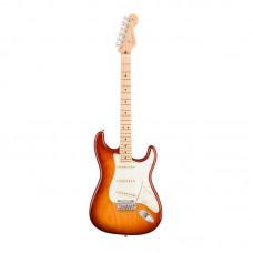 Fender American Pro Strat Maple SSB